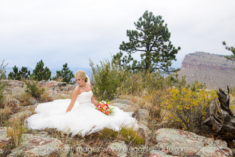 Estes Park Wedding Photography_Elegant Images__0048